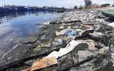 Hàng tấn rác thải bủa vây âu thuyền lớn nhất Đà Nẵng, người dân chỉ biết kêu trời