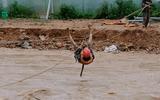 Lâm Đồng: Cảnh sát đu dây, giải cứu 41 người dân bị lũ cô lập