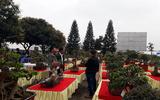 Hội chợ triển lãm SVC Bắc Ninh chào mừng Cách mạng Tháng 8 và Quốc khánh 2/9