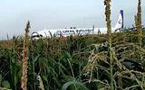 """Máy bay va chạm với chim hải âu, hơn 200 người may mắn thoát khỏi """"tử thần"""""""