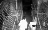 """Giải mã tội phạm qua """"lăng kính"""" của chuyên gia pháp y: Tên trộm đồ lót phụ nữ tử vong trong chuồng gà và cái kết bất ngờ"""