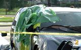 Mỹ: Bé gái 22 tháng tuổi tử vong thương tâm vì bị bỏ quên trong xe ô tô