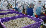 Kinh doanh - Thủy sản Minh Phú (MPC) đạt doanh thu hơn 11.000 tỷ sau 7 tháng