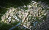 Kinh doanh - Dự án khu đô thị An Phú - An Khánh: Thủ tướng chưa giao đất, công ty đã đem bán