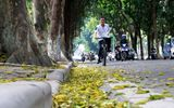 Tin trong nước - Dự báo thời tiết mới nhất hôm nay 24/8/2019: Hà Nội nắng nóng sau nhiều ngày mưa dông