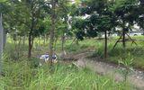 Hà Nội: Phát hiện thi thể đang phân hủy bên lề đường