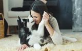 Sự may mắn của nữ chủ nhân khi thú cưng bị mắc Parvo