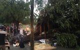 Hà Nội: Mưa lớn kèm gió giật, cây lớn đổ khiến nam thanh niên tử vong