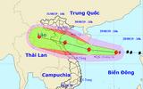 Tin tức dự báo thời tiết mới nhất hôm nay (29/8): Bão số 4 tiến sát đất liền