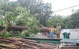 Thiệt hại do bão số 4 chưa xong, Việt Nam lại sắp phải đối phó bão số 5