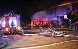 Bình Dương: Cháy công ty nệm mút rộng hơn 5.000m2, nhiều tài sản bị thiêu rụi