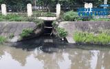 """Thanh Hóa: Khu công nghiệp Lễ Môn """"tuồn"""" nước thải ra môi trường?"""