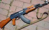 Gia Lai: Bắt 2 thanh niên dùng súng AK cướp taxi trong đêm