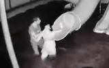 Yêu cầu xử lý nghiêm vụ chồng đánh đập vợ từ dưới nước lên tận bờ ở Tây Ninh