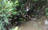 Tin trong nước - Đã xác định được danh tính người phụ nữ tử vong trong tình trạng lõa thể dưới suối ở Bình Dương