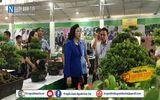 Xã hội - Hà Nội: Công tác chuẩn bị Tổng kết 10 năm thực hiện chương trình mục tiêu Quốc gia về xây dựng Nông thôn mới