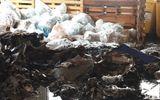 Video: Hiện trường vụ cháy kho phế liệu công ty bao bì ở Đà Nẵng
