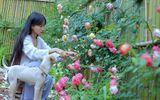 Về quê nấu ăn, làm nông, cựu DJ Lý Tử Thất trở thành triệu phú ở tuổi 29