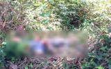 Lâm Đồng: Bàng hoàng phát hiện nam nhạc công tử vong bất thường bên bờ suối