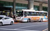Truyền thông - Thương hiệu - 7 phương tiện lý tưởng để khám phá đảo Jeju, Hàn Quốc