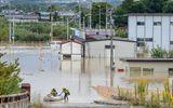 Tin thế giới - Trung tâm sơ tán Nhật Bản bị chỉ trích vì từ chối 2 người vô gia cư giữa siêu bão Hagibis