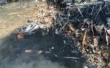 Tin trong nước - Hòa Bình chỉ đạo điều tra vụ đổ trộm dầu thải gây ô nhiễm nguồn nước