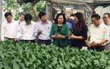 Về mô hình mở đường cho kinh tế hợp tác phù hợp với  trình độ của kinh tế hộ nông dân