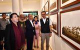 """Chủ tịch Quốc hội Nguyễn Thị Kim Ngân thăm Triển lãm ảnh """"Khoảnh khắc thiên nhiên"""""""