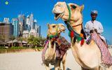 Ngỡ ngàng với cách tiêu tiền của Thái tử hoàng gia Dubai