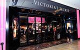 Kinh doanh - Đại bản doanh sản xuất nội y Victoria
