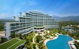 Crystal Bay Hospitality tiết lộ những bí quyết khiến hơn 30% khách quốc tế quay lại