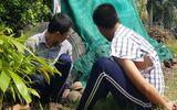 Tin trong nước - Tiền Giang: Vận động, tìm kiếm 119 học viên trốn khỏi trại cai nghiện