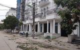 Tin trong nước - Hà Nội: Làm rõ vụ hàng cây xanh bị nhóm đối tượng chặt trộm trong đêm