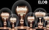 Xã hội - TDA vinh danh EloQ Communications với giải thưởng agency toàn cầu