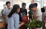 TP.HCM: Nhóm bạn trẻ gom chai nhựa, tặng ngàn cây xanh bảo vệ môi trường