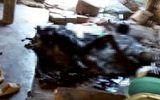 Tin trong nước - Kon Tum: Người phụ nữ chết cháy thương tâm vì quấn chăn ngủ cạnh bếp lửa