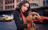 Giải trí - Phương Trinh Jolie: Những người lắm tiền nhiều của có nhóm kín chuyên bàn chuyện săn gái showbiz