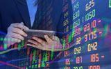 Kinh doanh - Thêm 305 nhà đầu tư nước ngoài được cấp mã giao dịch chứng khoán