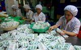 Kinh doanh - Sau trát phạt 350 triệu đồng, Vinphaco mới rục rịch lên sàn