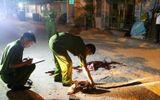 Án mạng kinh hoàng ở Nghệ An, 3 người bị đâm gục trên đường
