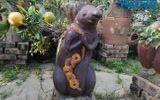 """Hút mắt với dàn cây """"chuột cõng quất bonsai"""" chưng ngày Tết"""