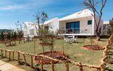 Bên trong khu resort triệu đô của Lý Nhã Kỳ mới khai trương trên đồi Đà Lạt
