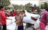 Xuất gạo hỗ trợ đến người dân vùng khó khăn trước Tết Nguyên đán Canh Tý