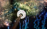 """Người Mỹ tưng bừng đón năm mới tại """"ngã tư đường của thế giới"""""""