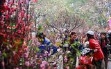 Hà Nội: Cấm đường 16 ngày liên tiếp phục vụ Tổ chức chợ Hoa Xuân năm 2020