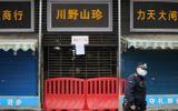 WHO: Bệnh viêm phổi lạ tại Vũ Hán, Trung Quốc do chủng virus mới gây ra