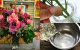 Bí quyết để giữ hoa luôn tươi trong ngày Tết