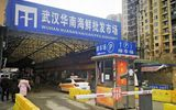 Bệnh viêm phổi lạ ở Trung Quốc xuất hiện tại các nước xung quanh