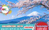 Tour Nhật Bản - Ngắm hoa anh đào dịp tết canh tý 2020