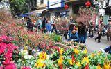 Đời sống - Chợ hoa Tết và thú chơi hoa